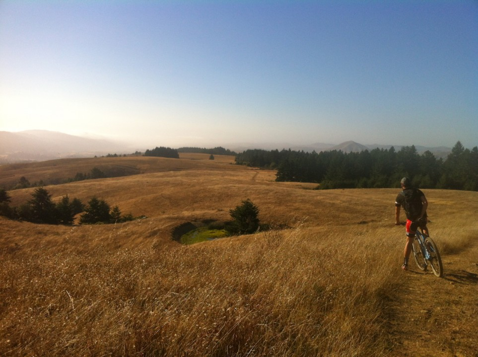 bolinas fairfax ridge trail