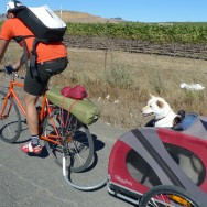 2010 Bike Camping in Napa
