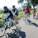 Yountville Ramble