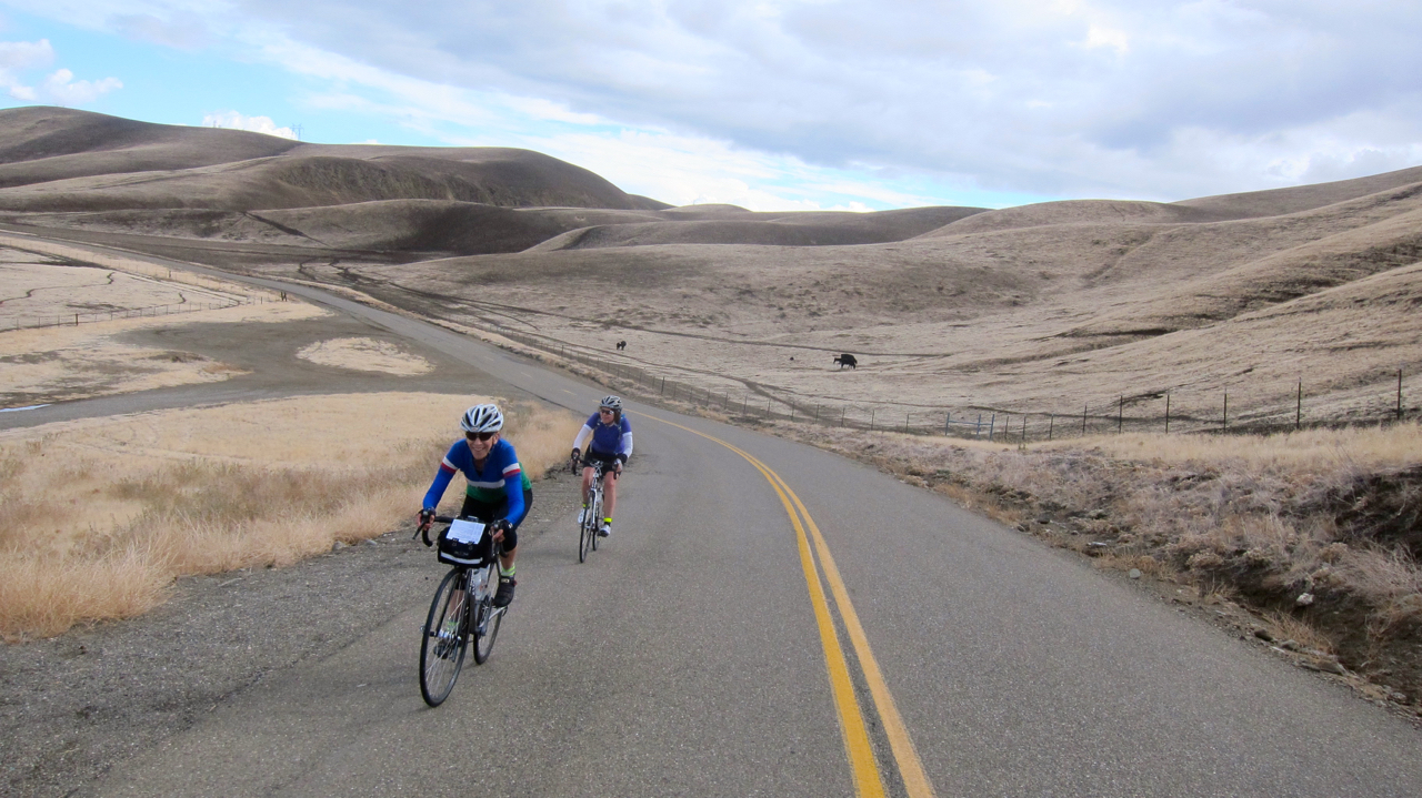 Randonneur Ride Report: Del Puerto Canyon 200k