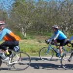 Randonneur Ride Report: 2015 SFR Flèche