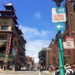 "Seagull Scavenger Hunt: Biking the ""49-Mile Scenic Drive"""